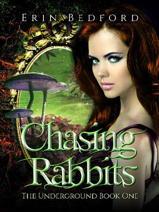 chasing-rabbits