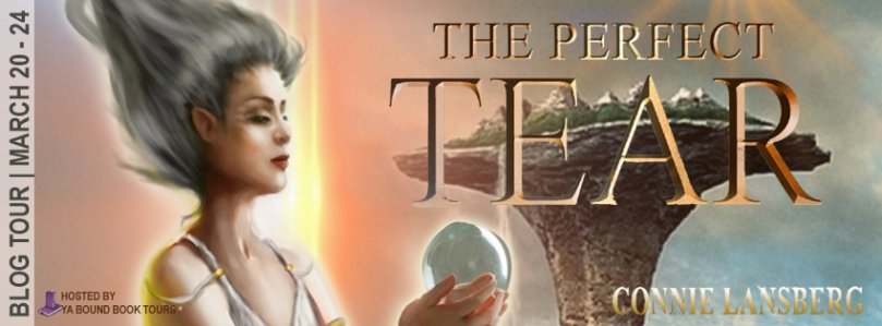 The Perfect Tear tour banner NEW.jpg