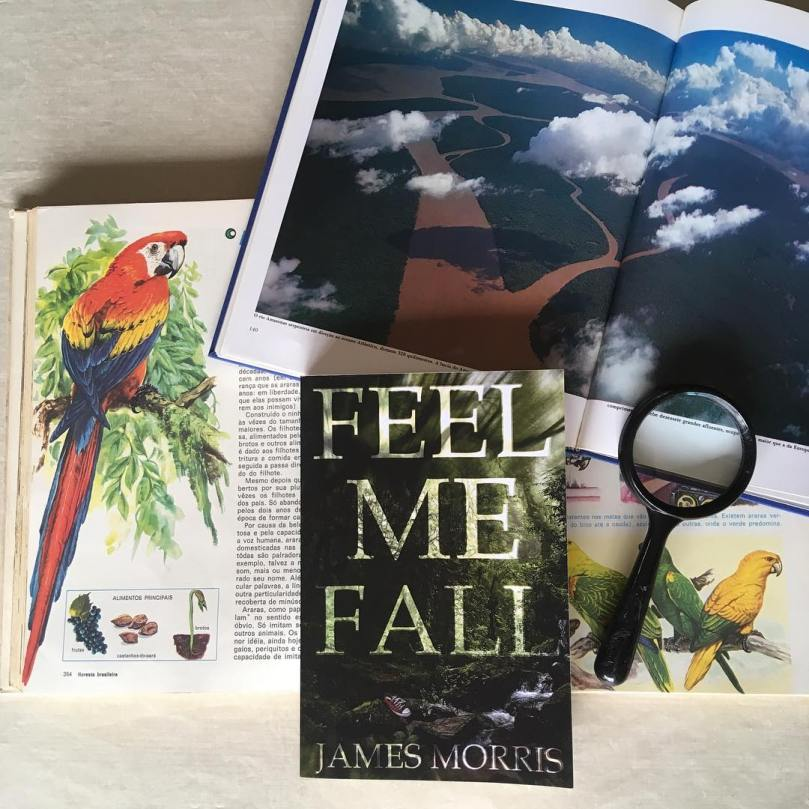 feel me fall james morris